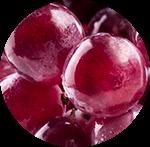 Creme Anticellulite Uvarò Con Semi di Uva Rossa