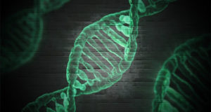 Nucleosoma Cosa è?
